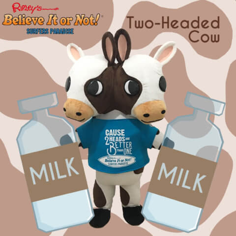 brand mascot milk